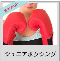 ジュニアボクシング